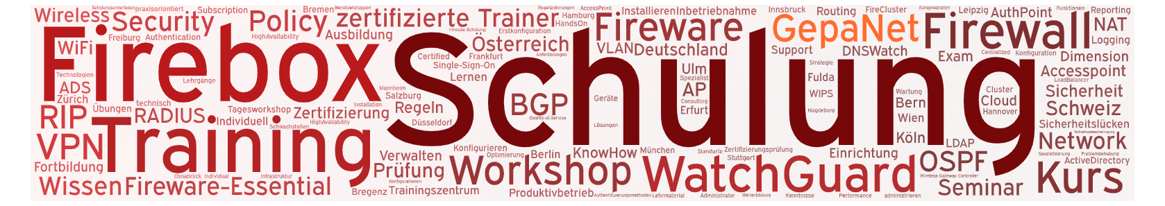 Workshop Schulung Training für Watchguard Firebox M und Firebox T Firewalls